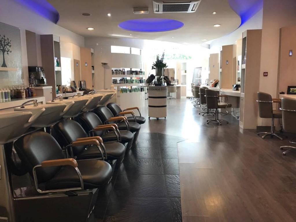 Salon de coiffure poitiers dessange for Exemple de reglement interieur salon de coiffure